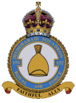New Squadron site 2 Badge